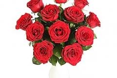 12-roses
