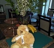 canada flowers teddy