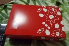 3075-12-chocolates-strawberry-usa-deliveredbox