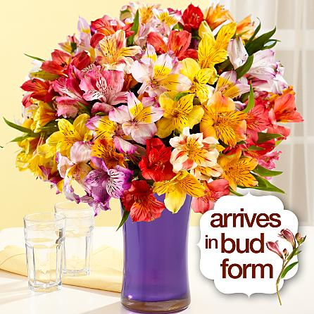 Order Lilies Frowers To Usa From Pakistan