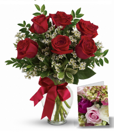 Beautiful Red Roses flowers to Canada from Pakistan