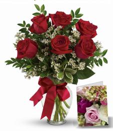 6 Red Roses flowers to Toronto Brampton Ontario Canada from Pakistan