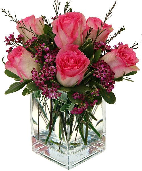 pink-roses-anniversary-birthday-happy-wedding-birth-anniversary-gift-cf22