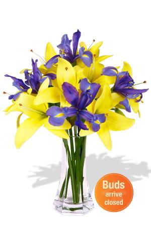 blue-iris-yellow-lillies-anniversary-birthday-wedding-gift-ReadysFlowers0334