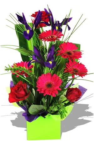 purple-iris-red-roses-wedding-birthday-anniversary-gift-australia-pakistan-ReadysFlowers0002