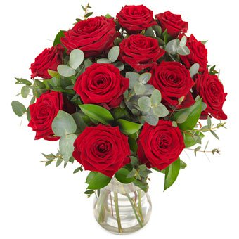 12 Red Roses Birthday Flowers to Germany from Karachi, Lahore, Islamabad, Rawalpindi