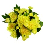 Send Yellow Carnations To UK From  Pakistan