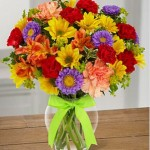 send color flower to usa from pakistan