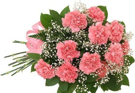 Send fresh pink flower to saudi arabia