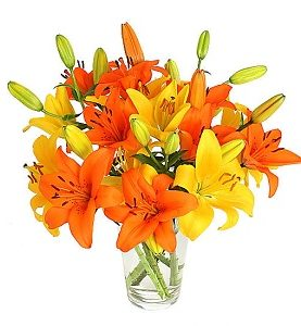 Peach & Yellow Lily Birthday Anniversary Flowers Bouquet Gift from Pakistan to UK England