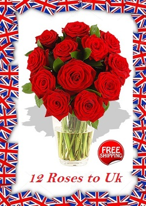 12 Red Roses Flowers To London Birmingham Leeds Manchester UK from Karachi Lahore IslamabadPakistan