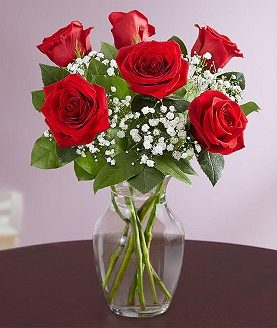 6 Red Roses Birthday Anniversary Flowers Gift To Canada from Pakistan
