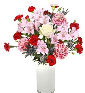 Carnations, Alstroemeria Birthday Corporate Wishes Flowers Sentiments Online from Pakistan to England UK
