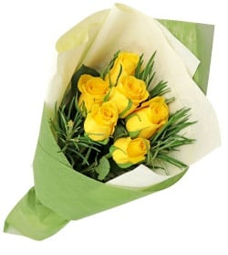6-yellow-roses-pakistan-sydney-nsw-australia-birthday-flowers-gift