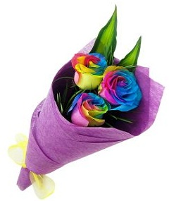 Rainbow 6 Roses Bouquet Birthday Flowers Gifts From Pakistan To Melbourne Australia