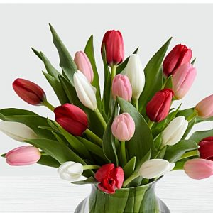sweetheart tulips for anniversary birthday get well soon well wishes from KHI ISB PEW UET to NC DE HI