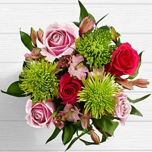 feminine roses fuji mums for your mother wife daughter sister girlfriend spouse significant other from SINDH PUNJAB KPK BALOCHISTAN AZAD KASHMIR to CALIFORNIA COLORADO