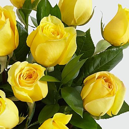 anniversary wedding birthday congratulations job promotion well wishing present gift in Maine Massachusetts USA