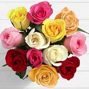 anniversary birthday love expression from Rawalpindi Sialkot to USA