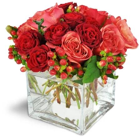 coral roses and spray roses Flowers to Toronto, Missisauga, Ontario, Alberta, Calgary, Hamilton, Ottawa, Montreal, Winnipeg allover Canada from Karachi, Lahore, Islamabad Pakistan
