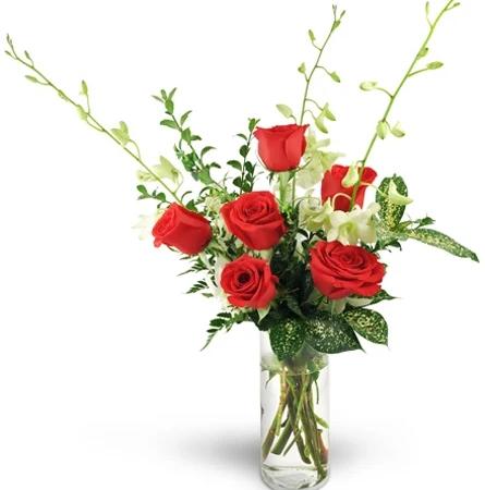 after-hours-six-red-roses-Flowers to Toronto, Mississauga, Ontario, Alberta, Calgary, Hamilton, Ottawa, Montreal, Winnipeg allover Canada from Karachi, Lahore, Islamabad Pakistan