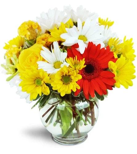 bright-delight-Flowers to Toronto, Mississauga, Ontario, Alberta, Calgary, Hamilton, Ottawa, Montreal, Winnipeg allover Canada from Karachi, Lahore, Islamabad Pakistan