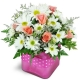 bubble-gum-bliss-Flowers to Toronto, Mississauga, Ontario, Alberta, Calgary, Hamilton, Ottawa, Montreal, Winnipeg allover Canada from Karachi, Lahore, Islamabad Pakistan