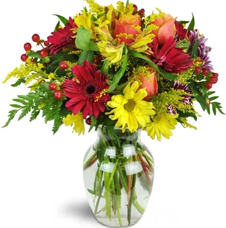 cheerful-wishes-Flowers to Toronto, Mississauga, Ontario, Alberta, Calgary, Hamilton, Ottawa, Montreal, Winnipeg allover Canada from Karachi, Lahore, Islamabad Pakistan