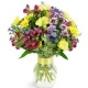 enchanted-fields-Flowers to Toronto, Mississauga, Ontario, Alberta, Calgary, Hamilton, Ottawa, Montreal, Winnipeg allover Canada from Karachi, Lahore, Islamabad Pakistan