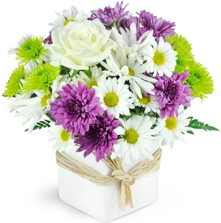 enchanting-maui-Flowers to Toronto, Mississauga, Ontario, Alberta, Calgary, Hamilton, Ottawa, Montreal, Winnipeg allover Canada from Karachi, Lahore, Islamabad Pakistan