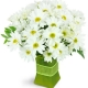 garden-fresh-Flowers to Toronto, Mississauga, Ontario, Alberta, Calgary, Hamilton, Ottawa, Montreal, Winnipeg allover Canada from Karachi, Lahore, Islamabad Pakistan