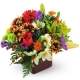 good-old-summertime-Flowers to Toronto, Mississauga, Ontario, Alberta, Calgary, Hamilton, Ottawa, Montreal, Winnipeg allover Canada from Karachi, Lahore, Islamabad Pakistan