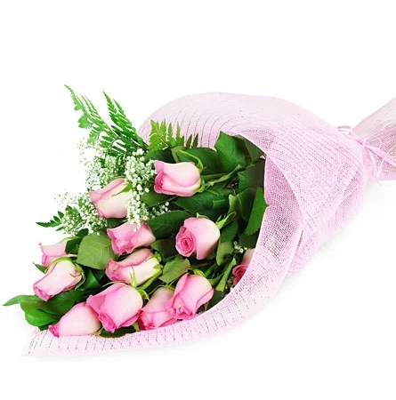 Perfect Wrapped Long-Stemmed Pink Roses-Flowers to Toronto, Missisauga, Ontario, Alberta, Calgary, Hamilton, Ottawa, Montreal, Winnipeg allover Canada from Karachi, Lahore, Islamabad Pakistan