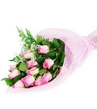 Perfect Wrapped Long-Stemmed Pink Roses-Flowers to Toronto, Missisauga, Ontario, Alberta, Calgary, Hamilton, Ottawa, Montreal, Winnipeg allover Canada from Karachi, Lahore, Islamabad Pakistan