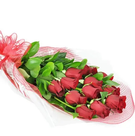 Perfect Wrapped Long-Stemmed Red Roses-Flowers to Toronto, Mississauga, Ontario, Alberta, Calgary, Hamilton, Ottawa, Montreal, Winnipeg allover Canada from Karachi, Lahore, Islamabad Pakistan
