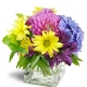 pretty-purple-cheer-Flowers to Toronto, Mississauga, Ontario, Alberta, Calgary, Hamilton, Ottawa, Montreal, Winnipeg allover Canada from Karachi, Lahore, Islamabad Pakistan
