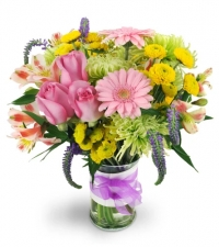 spring-surprise-Flowers to Toronto, Mississauga, Ontario, Alberta, Calgary, Hamilton, Ottawa, Montreal, Winnipeg allover Canada from Karachi, Lahore, Islamabad Pakistan