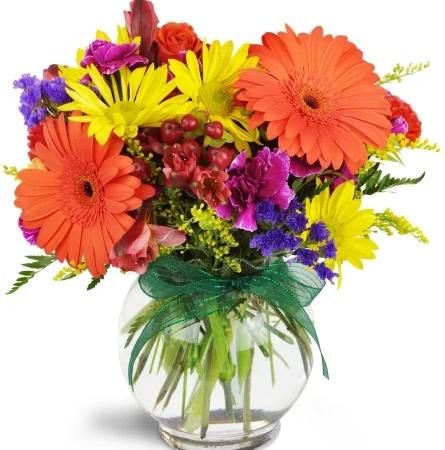 sunglow-blooms-Flowers to Toronto, Mississauga, Ontario, Alberta, Calgary, Hamilton, Ottawa, Montreal, Winnipeg allover Canada from Karachi, Lahore, Islamabad Pakistan
