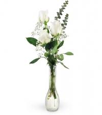 three-white-roses-Flowers to Toronto, Mississauga, Ontario, Alberta, Calgary, Hamilton, Ottawa, Montreal, Winnipeg allover Canada from Karachi, Lahore, Islamabad Pakistan