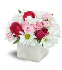 vibrant-blooms-Flowers to Toronto, Mississauga, Ontario, Alberta, Calgary, Hamilton, Ottawa, Montreal, Winnipeg allover Canada from Karachi, Lahore, Islamabad Pakistan