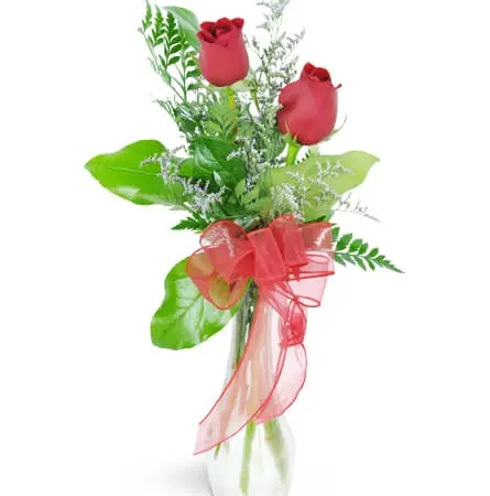 you-and-me-2-red-roses-flowers-Flowers to Toronto, Mississauga, Ontario, Alberta, Calgary, Hamilton, Ottawa, Montreal, Winnipeg allover Canada from Karachi, Lahore, Islamabad Pakistan