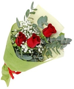 3-red-roses-pakistan-sydney-nsw-australia-birthday-flowers-gift-online-shop-site